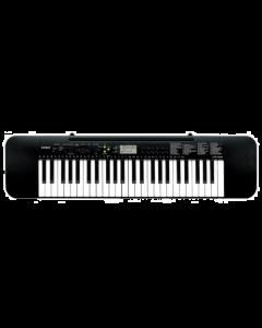 Casio CTK-245 Standard Keyboard