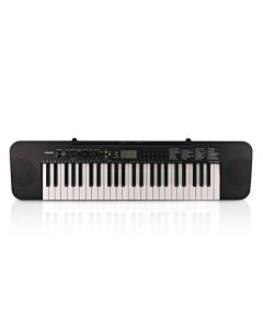 Casio CTK-240 Standard Keyboard